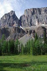 Meadow and Mountains (Andrew Pizzinato) Tags: towerlake mountain lake hiking castlemountain banff banffnationalpark