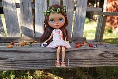 DSC02795 (Lindy Dolldreams) Tags: blythedoll doll chassycatcustom wren jeds123 girl