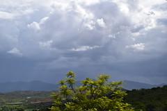 en el camino (Cynoise) Tags: oaxaca paisaje naturaleza verdor vida hermosura nature montañas felicidad heaven