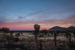 Kata Tujata Sunrise Uluru-26