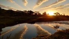 Amanhecer em Pindamonhangaba (Marcos Simanovic) Tags: sunshine sunrise amanhecer nascerdosol solnascente simanovic