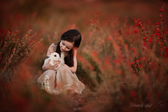 Tender (Portraits by Suzy) Tags: flowers red nature animals orange fairy magic dreamy pets farm fairytale princess rabbit natural light fairytail beauti fairytales elven enchanted white wild bummy las vegas photographer portraits by suzy mead child with pet bunny
