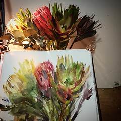 Australian native plants. #watercolour #painting #sketching #fabrianoartistico #smooth #flower #art #watercolourakolamble #australiannativeplant (akolamble) Tags: watercolour painting sketching fabrianoartistico smooth flower art watercolourakolamble australiannativeplant