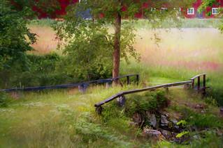 Old stone vault bridge with grass .