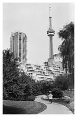 Toronto Music Garden (dennisfromthere) Tags: analog streetphotography bw nikonf100 50mm18 summer toronto cntower musicgarden ilford monochrome blackandwhite ontario canada bandw 2017 noiretblanc urban city park trees outdoor 400