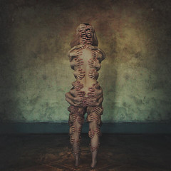 torn apart / held together (brookeshaden) Tags: