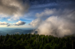 The fog rolls in (·tlc∙) Tags: smokymountainsnationalpark clingmansdome hike clouds fog trees outdoors landscape