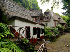 Santana, Madeira 2017_House in a forest (alsimages1 - Thank you for 860.000 PAGE VIEWS) Tags: house santana traditional houses beautiful gardens athmosphere travelling quaint village agriculture craftwork mountains valleys sea sailing hotels walking levada queimadas forest park