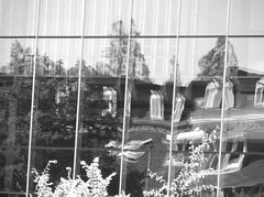 Reflections (~Ingeborg~) Tags: meinge amsterdam reflections reflectie monochroom monochrome building gebouw kantoor huizen houses vervormd distorted krom chrome distortedpicture vertekendbeeld false vals photowalk wijn wine bier beer camera ramen windows boom tree mysterious geheimzinnig architecture architectuur glas glass