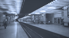 Train Platform [204/365 2017] (steven.kemp) Tags: warsaw train platform airport perspective poland