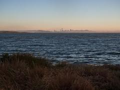 SF skyline from the Albany Waterfront Trail (jenesizzle) Tags: sfskyline skyline sanfranciscoskyline hiking landscape outdoors california northerncalifornia bayarea eastbay albany sunset beach coast albanyblub albanymarinestatereserve californiastatepark