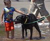 Meeting & Greeting (swong95765) Tags: kid boy dog water wet play meet greet touch pat