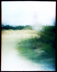 A path through the wilderness (FreezerOfPhotons) Tags: debonair fpp fppdebonair 645 mediumformat 120 film 120film kodakalaris kodakektar100 colorprintfilm c41 home homec41 unicolorc41 blurry multipleexposure abstractish
