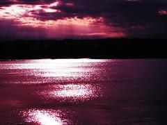 Purple Passion at Night (Professor Bop) Tags: olympusem1 purple professorbop drjazz wilmingtonvermont sunset lake