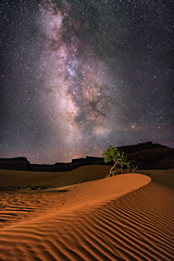 Dunes (Wayne Pinkston) Tags: night nightsky coppercanyon monumentvalley nightscape nightphotography nightlandscape waynepinkston waynepinkstonphotocom lightcrafter lightcraftercom stars starrynight milkyway galaxy cosmos theheavensstrophotography astronomy landscapeastrophotography widefieldastrophotography nikon sky