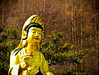 A DI DA PHAT QUAN THE AM BO TAT DAI THE CHI BO TAT GUANYIN KWANYIN BUDDHA 8500 (ketnoivietnam) Tags: amazing affectionate amitabha architecture art asia avalokitesvara awesome bangkok beautifull beijing palace bhutan bodhisattva bouddha buddha tooth relic temple buddhism buddhist china chinatown chua excellent fantastic flickraward gold golden guanyin hainan hdr history hong kong indian information japan korea kuanim kuanyin kwanyin laos laughing light lotus flower lovely mantra meditation mount emei museum
