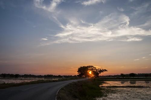singburi - thailande 41