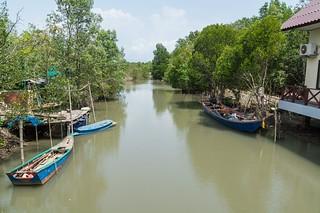 trat - thailande 5