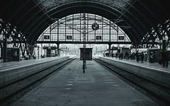 I managed not to get lost.  #germany #leipzig #deutschebahn #db #sonya6000 #sigma #travel #trainstation (handcoversheart) Tags: db sigma deutschebahn leipzig sonya6000 germany trainstation travel
