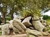 07.06.2017 - Batz, jardin Georges-Delaselle (20) (maryvalem) Tags: france bretagne finistère îledebatz alem lemétayer alainlemétayer