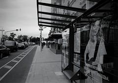 Остановка на бульваре. Москва, Россия (varfolomeev) Tags: 2017 россия город улица fujifilmxt10 russia bw monochrome city street