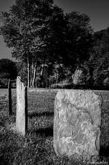 pierres dressées (Patrice Dx) Tags: pierres schiste ardoise