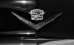 DSC_3102 BW (C&C52) Tags: extérieur voiture cadillac insigne capot collector