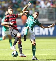 Palmeiras x Vitória (16/07/2017) (sepalmeiras) Tags: allianzparque campeonatobrasileiro palmeiras sep sã©riea vitã³ria palmeirasxvitoria16072017 sériea vitória tchetche
