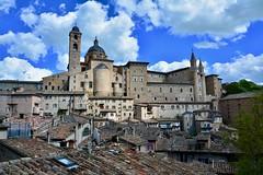 Urbino 2017 – View of Urbino with the Duomo and the Palazzo Ducale (Michiel2005) Tags: view uitzicht palazzoducale duomo urbino italy italia italië marche marken demarken pesaroeurbino