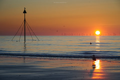Prestatyn (leecaine) Tags: wales beach north coast uk seagulls water sea sunset reflection reflections wind sand