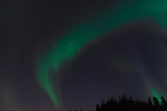 IMG_5811 (AdvantagePhotography) Tags: advantagephotography northernlights aurora borealis night sky star starry astrophotography aurorachasers canada bigdipper stars