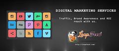 leapfeed3 (Web Development & Data Feed Marketplace services) Tags: digitalmarketingcompany bestseocompany smo services serach engine optimization india pay per click