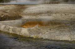 Norris Geyser Basin (rschnaible) Tags: yellowstone national park west western us usa outdoor sightseeing norris geyser basin hot spring wyoming river water