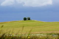 Landscape (Jurek.P) Tags: landscape krajobraz masuria masurianlandscapes mazury poland polska summer lato jurekp sonya77