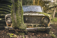 Parking spot (Marco Bontenbal (Pixanpictures.com)) Tags: nikon d750 tamron 1530 lost abandoned decay decayed hidden world europe eu exploring urbex urban ue urbanexploring photography pixanpictures car vehicle tree bumper old tire woods beautiful belgium headlights