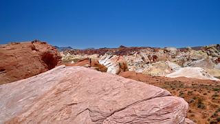 The Desert is Alive - Die Wüste lebt - Valley of Fire