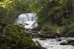 IMG_0174 (zamo86) Tags: nature decew falls niagara st catharines ontario waterfall