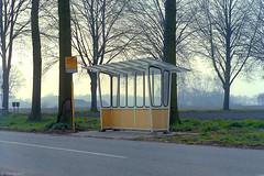 Wachthuisje GTW (Tim Boric) Tags: bus stop bushalte abri wachthuisje shelter unterstand haltestelle arrêt