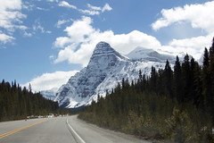 Icefields Parkway (seann.mcauliffe) Tags: canada summer alberta icefield parkway rocky mountains