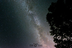 Light in the sky (Florian Bu Fotografie) Tags: nacht dunkel night dark sky himmel milkyway milchstrase sterne star tree baum lzb langzeitbelichtung longtimeexposure