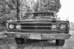 170705-141 Plymouth (clamato39) Tags: auto car oldcars vieille ancient ancestrale antiquité ancien old provincedequébec québec canada noiretblanc bw blackandwhite monochrome