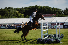 British_Showjumping_013