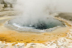 Colorful Hot Spring (rschnaible) Tags: yellowstone national park us usa west western wyoming sightseeing outdoors tour tourist geyser hot spring pool water color colorful blue yellow