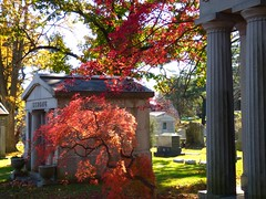 P1060595 (amiterangi1) Tags: woodlawncemetery autumn cemetery woodlawn
