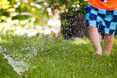 Water Sport 10 (LongInt57) Tags: boy child children person people water sprinkler grass lawn walking running green blue orange kelowna bc canada okanagan