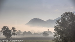 View from a coach window (Bobs Photographics) Tags: bobsphotographics bobsphotography legerholidayssilverservice leger legerholidays viewfromacoachwindow italianlandscape italia italy mist rollinghills beautiful whatyoudontseewhenyoufly