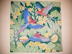 Macaw (Lynne M. B.) Tags: coloringadults coloring coloringbook coloredpencils drawing art illustration prismacolor tropicalworld milliemarotta mandala