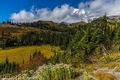 NT3.0057-MRNP160925_48787 (LDELD) Tags: mountrainier mountrainiernationalpark fall roadtoparadise washington paradisevalley mountain clouds