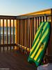 Ready to surf (SMPhotos2548) Tags: surf beach ocean shore nj newjersey goldenhour morning sea seaside boardwalk sunrise boogieboard