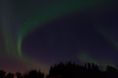 IMG_5826 (AdvantagePhotography) Tags: advantagephotography northernlights aurora borealis night sky star starry astrophotography aurorachasers canada bigdipper stars